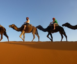 Riding in the Sahara