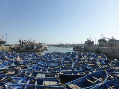 Some of the fishing boats