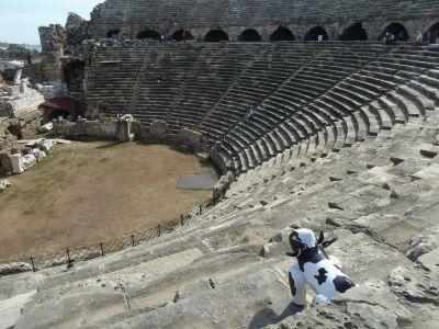 Piako surveys the theatre