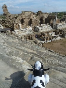 Piako liked the ruins