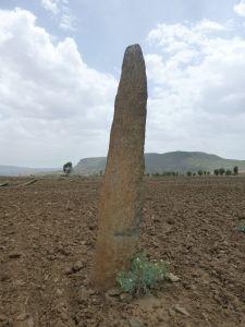 In the minor stelae field