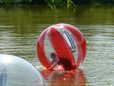 Reubs on the lake